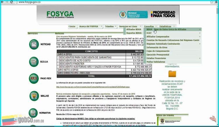 Estado afiliación EPS Fosyga